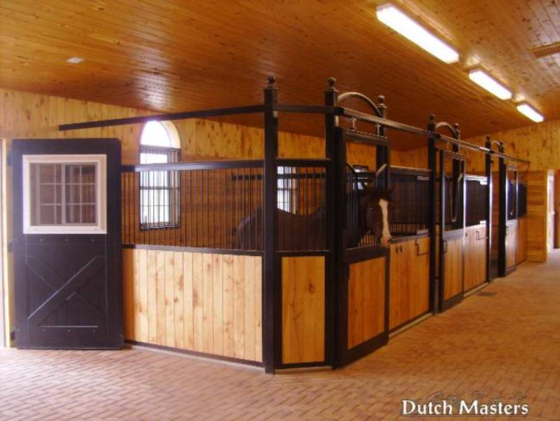 horse barn kitchener