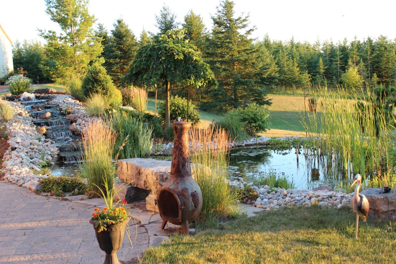 pond feature kitchener